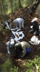 クラスノヤルスク地方 での遺骨収集