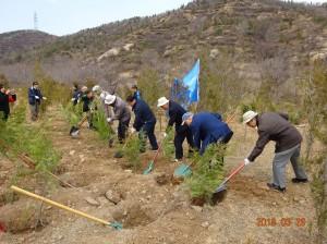 万里の長城での植林活動
